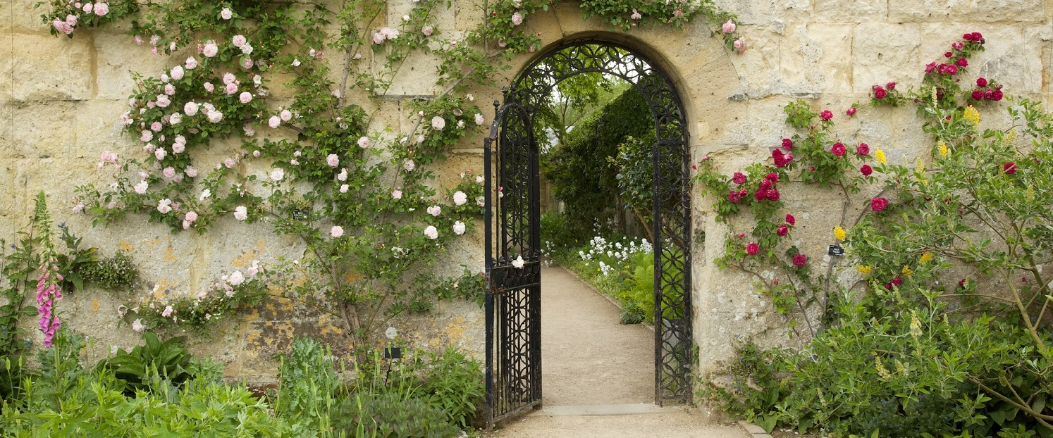 Why The Oxford Botanical Garden Is A Must Visit